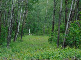 Photo 8: Lot 6 27331 Township Road 481: Rural Leduc County Rural Land/Vacant Lot for sale : MLS®# E4223752