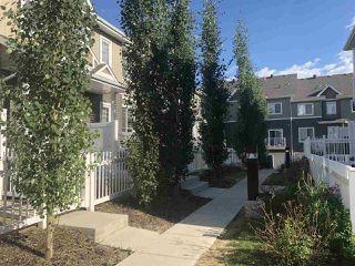 Photo 5: 81 4050 SAVARYN Drive in Edmonton: Zone 53 Townhouse for sale : MLS®# E4225032