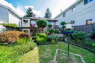 Photo 7: 2843 E 5TH Avenue in Vancouver: Renfrew VE House for sale (Vancouver East)  : MLS®# R2391370
