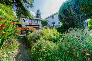 Photo 11: 2843 E 5TH Avenue in Vancouver: Renfrew VE House for sale (Vancouver East)  : MLS®# R2391370