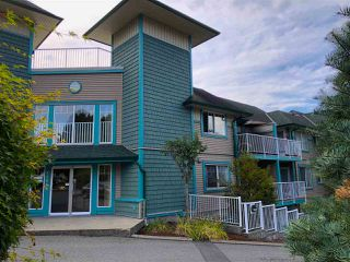 """Photo 16: 321 33960 OLD YALE Road in Abbotsford: Central Abbotsford Condo for sale in """"Old Yale Heights"""" : MLS®# R2404082"""
