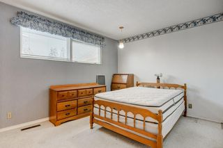 Photo 29: 3432 LANE CR SW in Calgary: Lakeview House for sale : MLS®# C4279817