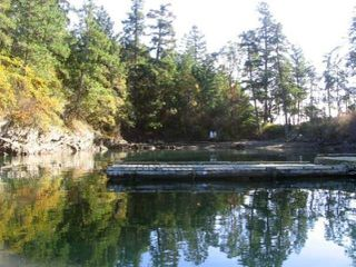 "Photo 10: 16 WISE Island: Galiano Island Land for sale in ""WISE ISLAND"" (Islands-Van. & Gulf)  : MLS®# R2478951"
