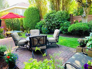 Photo 1: 71 6600 LUCAS Road in Richmond: Woodwards Townhouse for sale : MLS®# R2479700
