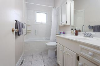 Photo 12: 34 CURLEW Crescent: Sherwood Park House for sale : MLS®# E4208110