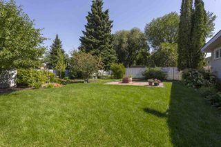 Photo 16: 34 CURLEW Crescent: Sherwood Park House for sale : MLS®# E4208110