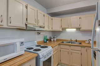 Photo 11: 27 821 3 Avenue SW in Calgary: Eau Claire Apartment for sale : MLS®# A1031280