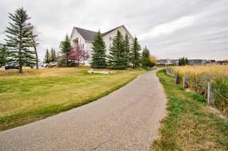 Photo 36: 401 305 1 Avenue NW: Airdrie Apartment for sale : MLS®# A1040343