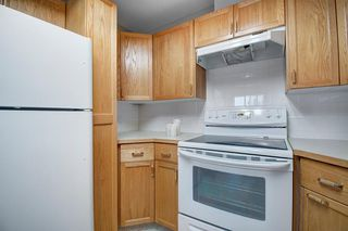 Photo 8: 401 305 1 Avenue NW: Airdrie Apartment for sale : MLS®# A1040343