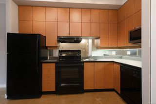 Photo 9: 218 409 Swift St in : Vi Downtown Condo for sale (Victoria)  : MLS®# 861994