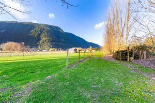 Photo 15: 5353 INTERPROVINCIAL Highway in Abbotsford: Sumas Prairie House for sale : MLS®# R2528573