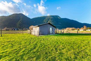 Photo 14: 5353 INTERPROVINCIAL Highway in Abbotsford: Sumas Prairie House for sale : MLS®# R2528573