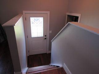 Photo 7: 17052 98 Street in Edmonton: House for rent