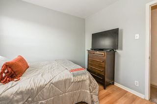 Photo 23: 73 Kinrade Avenue in Hamilton: House for sale : MLS®# H4065497