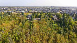 Photo 20: 180 WINDERMERE Drive in Edmonton: Zone 56 House for sale : MLS®# E4214878