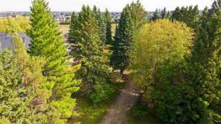 Photo 24: 180 WINDERMERE Drive in Edmonton: Zone 56 House for sale : MLS®# E4214878