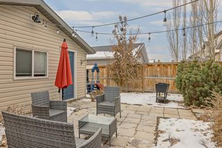 Photo 43: 5021 Elgin Avenue SE in Calgary: McKenzie Towne Detached for sale : MLS®# A1049687