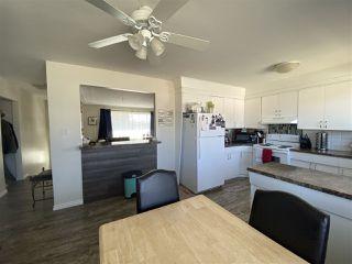 Photo 18: 7312 79 Avenue in Edmonton: Zone 17 House Duplex for sale : MLS®# E4196199