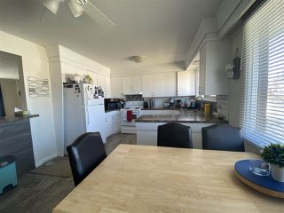 Photo 17: 7312 79 Avenue in Edmonton: Zone 17 House Duplex for sale : MLS®# E4196199