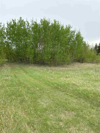 Photo 6: HWY 16A RR 13 SW Section: Rural Parkland County Rural Land/Vacant Lot for sale : MLS®# E4198812
