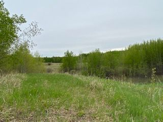 Photo 3: HWY 16A RR 13 SW Section: Rural Parkland County Rural Land/Vacant Lot for sale : MLS®# E4198812