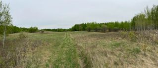 Photo 7: HWY 16A RR 13 SW Section: Rural Parkland County Rural Land/Vacant Lot for sale : MLS®# E4198812