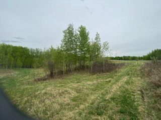 Photo 5: HWY 16A RR 13 SW Section: Rural Parkland County Rural Land/Vacant Lot for sale : MLS®# E4198812