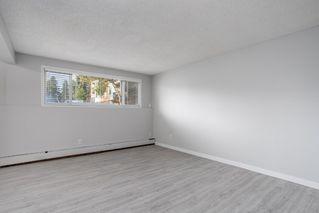 Photo 12:  in Edmonton: Zone 16 Condo for sale : MLS®# E4212804