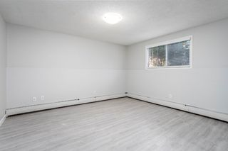 Photo 20:  in Edmonton: Zone 16 Condo for sale : MLS®# E4212804