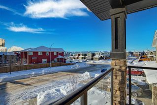 Photo 34: 244 Sandstone Drive: Okotoks Detached for sale : MLS®# A1056775