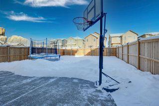 Photo 44: 244 Sandstone Drive: Okotoks Detached for sale : MLS®# A1056775