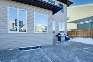 Photo 45: 244 Sandstone Drive: Okotoks Detached for sale : MLS®# A1056775