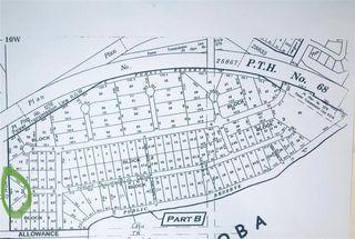 Photo 2: 0 Lake Manitoba Narrows Drive in Alonsa: Lake Manitoba Narrows Residential for sale (R19)  : MLS®# 202100497