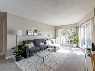 Main Photo: 212 3353 HEATHER Street in Vancouver: Cambie Condo for sale (Vancouver West)  : MLS®# R2432792