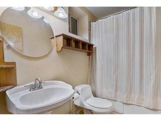 Photo 26: 12448 254 Street in Maple Ridge: Websters Corners House for sale : MLS®# R2513115
