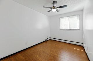 Photo 15: 16 10931 83 Street in Edmonton: Zone 09 Condo for sale : MLS®# E4209781