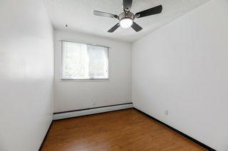 Photo 13: 16 10931 83 Street in Edmonton: Zone 09 Condo for sale : MLS®# E4209781