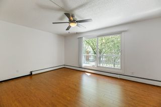 Photo 10: 16 10931 83 Street in Edmonton: Zone 09 Condo for sale : MLS®# E4209781