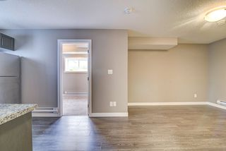 Photo 31: 9451 227 Street in Edmonton: Zone 58 House for sale : MLS®# E4216571