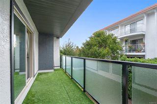 Photo 21: 206 1241 Fairfield Rd in : Vi Fairfield West Condo for sale (Victoria)  : MLS®# 858342