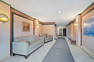Photo 25: 206 1241 Fairfield Rd in : Vi Fairfield West Condo for sale (Victoria)  : MLS®# 858342