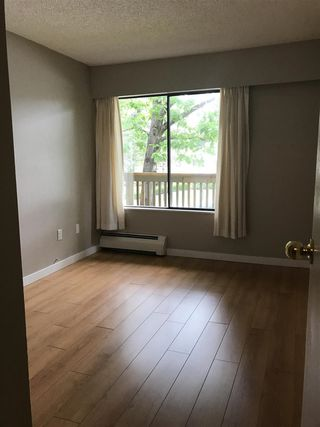 """Photo 9: 203 10061 150 Street in Surrey: Guildford Condo for sale in """"Forest Manor"""" (North Surrey)  : MLS®# R2484947"""