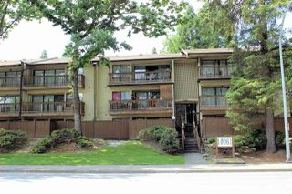 """Photo 1: 203 10061 150 Street in Surrey: Guildford Condo for sale in """"Forest Manor"""" (North Surrey)  : MLS®# R2484947"""
