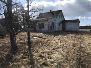 Photo 3: 304 Little Liscomb Road in Little Liscomb: 303-Guysborough County Vacant Land for sale (Highland Region)  : MLS®# 202100565