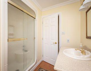 Photo 17: 10413 28A Avenue in Edmonton: Zone 16 House for sale : MLS®# E4172919