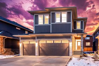 Main Photo: 117 Sandpiper Bay: Chestermere Detached for sale : MLS®# A1019536