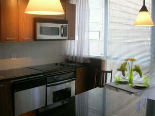 "Photo 4: 202 1199 SEYMOUR ST in Vancouver: Downtown VW Condo for sale in ""BRAVA"" (Vancouver West)  : MLS®# V605305"