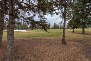 Photo 44: 93 FAIRWAY Drive in Edmonton: Zone 16 House for sale : MLS®# E4179247