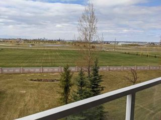 Photo 34: 326 200 Bethel Drive: Sherwood Park Condo for sale : MLS®# E4197904