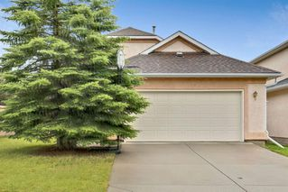 Main Photo: 73 EVERGREEN Close SW in Calgary: Evergreen Detached for sale : MLS®# A1009684